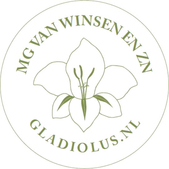 Gladiolus NL